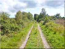 SY8086 : Winfrith Heath, track by Mike Faherty