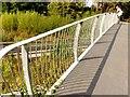 SJ3686 : Metal railings, Festival Park by Norman Caesar