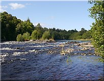 NH5043 : Southern end of the Cruives, River Beauly by Craig Wallace