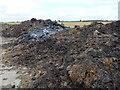 TF2027 : Muck heap and burnt straw on Burtey Fen by Richard Humphrey