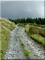 SN7762 : Byway south-east of Strata Florida, Ceredigion by Roger  Kidd