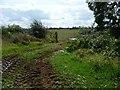 SP2305 : Field entrance, south of Filkins Farm by Christine Johnstone