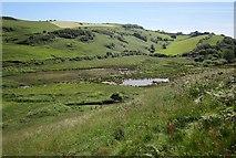 SX9253 : Valley behind Man Sands by Derek Harper