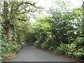 TQ0388 : Tilehouse Lane, Denham by David Howard
