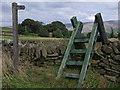 SK0290 : Ladder stile by Stephen Burton