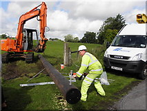 H6156 : Installation of new electricity line, Tullybyran by Kenneth  Allen