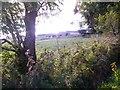 NJ6101 : Tillyneckle Farm by Stanley Howe