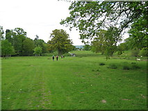 SO3671 : Party in the park-Brampton Bryan, Herefordshire by Martin Richard Phelan