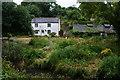 SW7026 : Cottage in Gweek by Bill Boaden