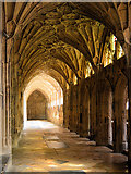 SO8318 : The Cloisters, Gloucester Cathedral by Philip Pankhurst