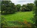 SP1269 : Trees along a stream, south of Danzey Green Farm by Christine Johnstone