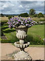 SP2556 : Charlecote Park - urn with flowers by Chris Allen