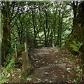 NS2575 : Path to Pennyfern Road by Lairich Rig