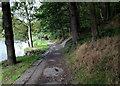 SE1134 : Footpath in Chellow Dene by Chris Heaton