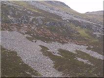 NN9193 : Herd of deer on Leth-chreag above River Eidart, Glenfeshie by ian shiell