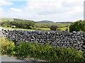 SD8867 : Dry stone walling by Philip Platt
