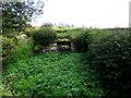 H1786 : Lime kiln, Cronalaghey by Kenneth  Allen