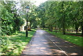 TQ2579 : Cycle track, Holland Park by N Chadwick