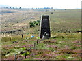 NY5791 : Old Toll Pillar at Bloody Bush by Andrew Curtis