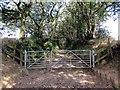 SN0623 : Llwybr Ceffyl Ffynnongain Bridleway by Alan Richards