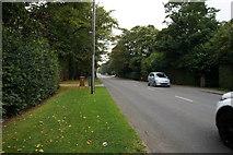 TA2904 : Humberston Avenue, New Waltham by Ian S