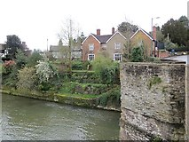 SO5174 : River Teme, Ludford by Richard Webb