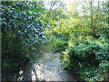 TQ5571 : River Darent by Chris Whippet