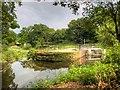 SJ8382 : River Bollin at Quarry Bank Mill by David Dixon