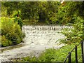 SJ8382 : River Bollin Weir at Quarry Bank Mill by David Dixon