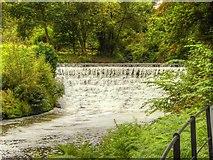 SJ8382 : River Bollin Weir at Quarry Bank Mill by David Dixon