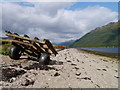 NS2093 : A Tideline Trailer by James T M Towill