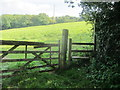 ST6360 : Footpath to Poacher's Pocket by Dr Duncan Pepper