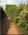 SX9168 : Ridge Road by Derek Harper