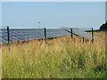 TF8938 : Solar farm at Egmere by Evelyn Simak