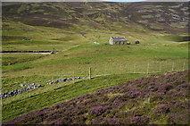 NO1485 : Newbigging house, Glen Clunie by jeff collins
