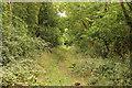 TF0618 : Former trackbed by Richard Croft