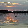 SK6038 : Adbolton: evening reflections  by John Sutton