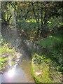 SX2960 : River Seaton by Derek Harper