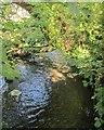 SX2959 : River Seaton by Derek Harper
