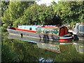 """SP8813 : Narrowboat """"Severn No 86"""" at Bates Boatyard by David Hawgood"""