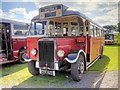SD8203 : Leyland TS8 War Time Dual Purpose Coach by David Dixon