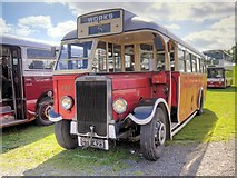 SD8203 : Leyland TS8 War Time Dual Purpose Coach by David Dixon