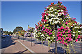 NH5246 : Floral display, Beauly by Richard Dorrell
