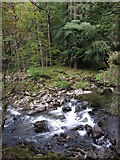 SH5946 : Glaslyn River in the Pass of Aberglaslyn by Gareth James