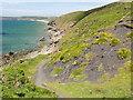 SM8519 : The Coastline at Trefrane Cliff by Tony Atkin