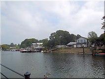 TQ1673 : Eel Pie Island by Paul Gillett