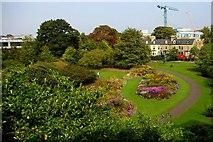TL4557 : Cambridge Botanic Garden by Tiger