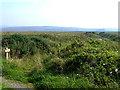 NR2767 : Gruinart RSPB reserve by Oliver Dixon
