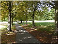TQ3090 : Path in Alexandra Park by Nigel Mykura