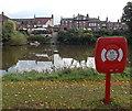 SJ4912 : Across the Severn from Lifebuoy Station 23, Shrewsbury by Jaggery